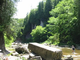 Someone walking in the Elora Gorge